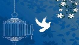 رهایی ۱۲ محکوم به قصاص از اعدام  در مازندران