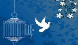 رهایی یک محکوم به قصاص با پیگیریهای شورای حل اختلاف بوشهر